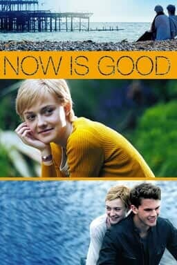 Now Is Good - Key Art