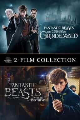 fantastic beasts bundle
