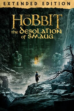 The Hobbit: The Desolation of Smaug (Extended Edition) - Key Art