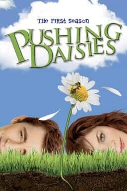 Pushing Daisies - Key Art