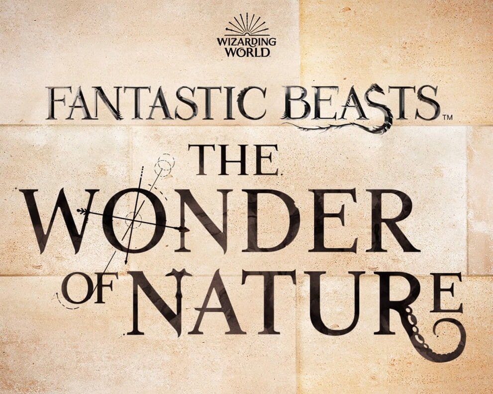 Fantastic Beasts Wizarding World Natural History Museum
